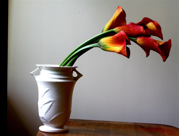 Red and yellow lillies in vase